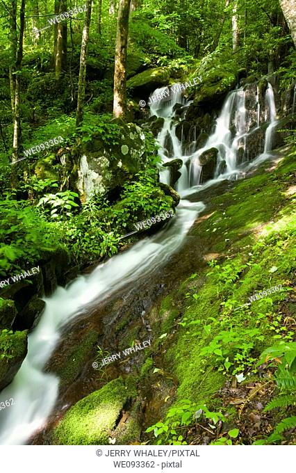 Waterfalls, Tremont, Great Smoky Mountains National Park, TN