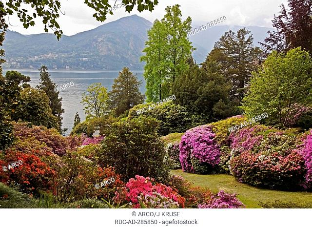 Botanical garden, Villa Carlotta, view on Lake Como, Tremezzo, province of Como, Lombardy, Italy / Lago di Como