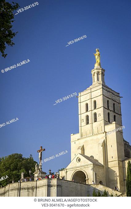 Notre Dame des Doms Cathedral in Avignon (department of Vaucluse, region of Provence-Alpes-Côte d'Azur, France)