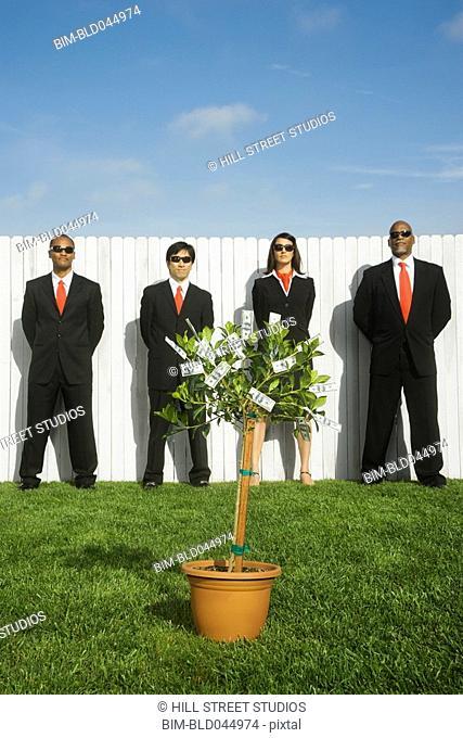 Multi-ethnic businesspeople behind money tree
