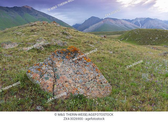 Rocks and Lichens, Naryn gorge, River, Naryn Region, Kyrgyzstan