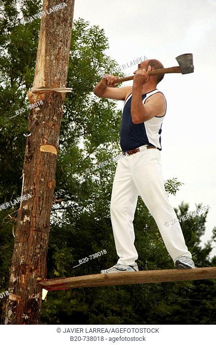 'Aizkolari' cutting tree trunk, Basque rural sport, Hondarribia. Guipuzcoa, Basque Country, Spain