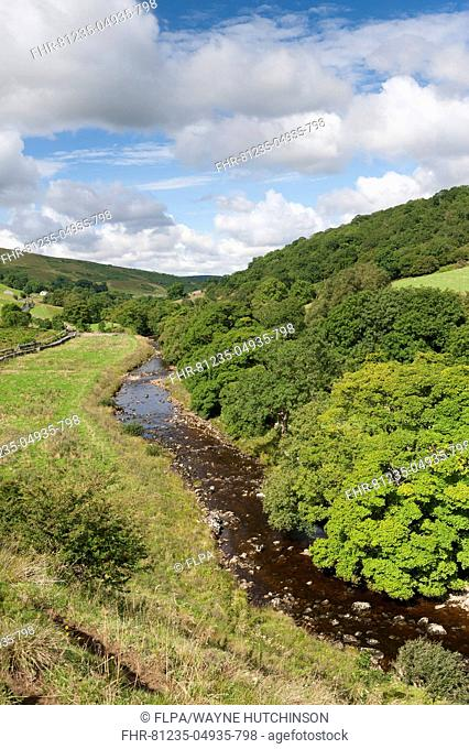View of river and woodland in late summer, near Starbotton, Upper Wharfedale, Yorkshire Dales N.P., North Yorkshire, England, September