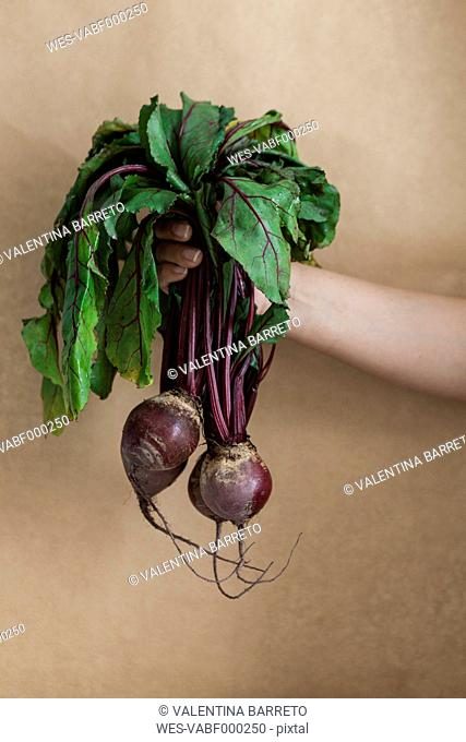 Woman's hand holding bunch of beetroot