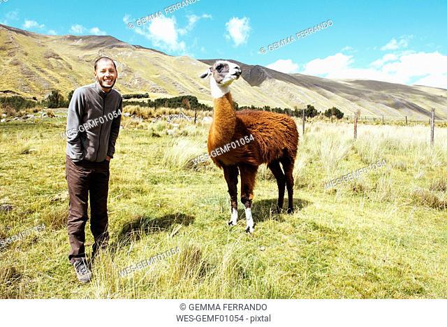 Peru, Huaraz, traveler with a llama in a meadow