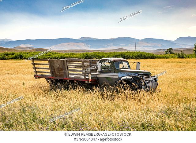 Forgotten vintage pick-up rusts away in field in front of Teton Mountain Range, Grand Tetons National Park, Teton County, Wyoming. USA
