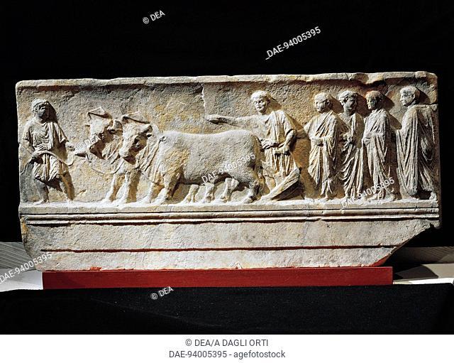 Italic civilizations, 1st century b.C. Limestone sulcus primigenius relief, representing the ceremony of the foundation of the city of Aquileia