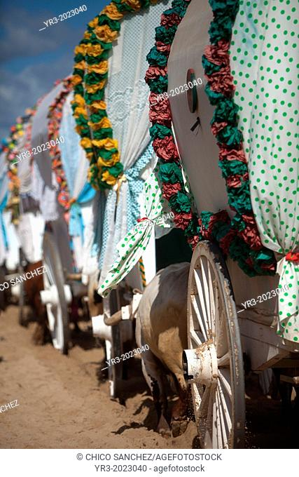 Oxcarts of the Triana Brotherhood arrive to El Rocio smalll village, in Almonte, Donana National Park, Huelva province, Andalusia, Spain, May 18, 2013