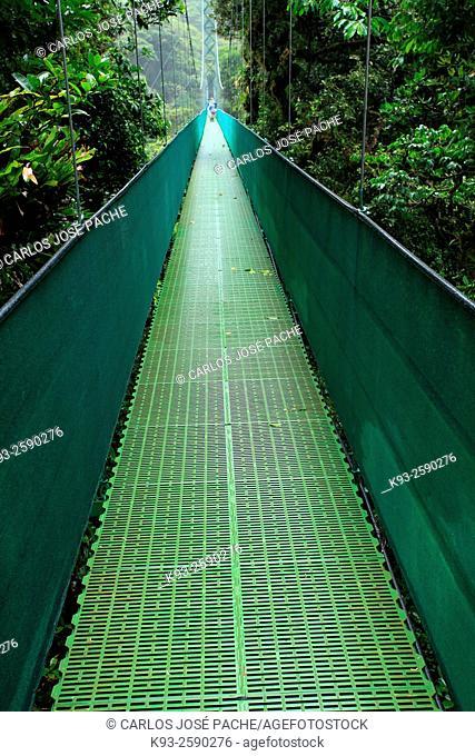 Sky Walk suspension bridge, Monteverde Cloud Forest Reserve, Costa Rica