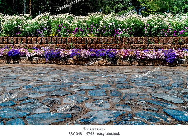 Colorful flowers hedge fence with gray stone concrete floor