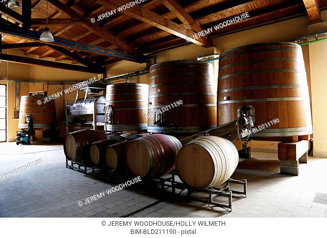 Wine barrels in vineyard storehouse