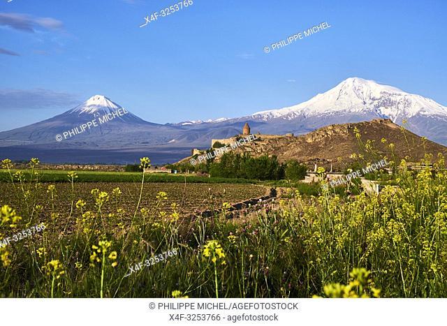 Armenie, region d'Ararat, monastère de Khor Virap et le mont Ararat / Armenia, Ararat region, Khor Virap monastery and Ararat mountain