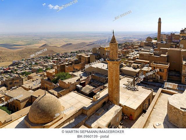 Historic centre of Mardin, Southeastern Anatolia Region, Anatolia, Turkey
