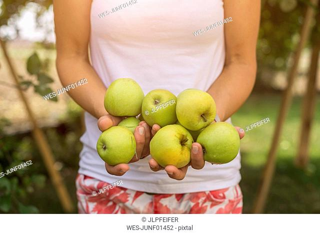 Woman holding harvested apples