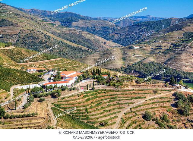 Vineyards, Alto Douro Wine Valley, UNESCO World Hertiage Region, Portugal