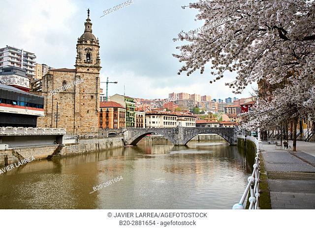 Ria del Nervión, Iglesia y Puente de San Antón, Casco Viejo, Bilbao, Bizkaia, Basque Country, Spain