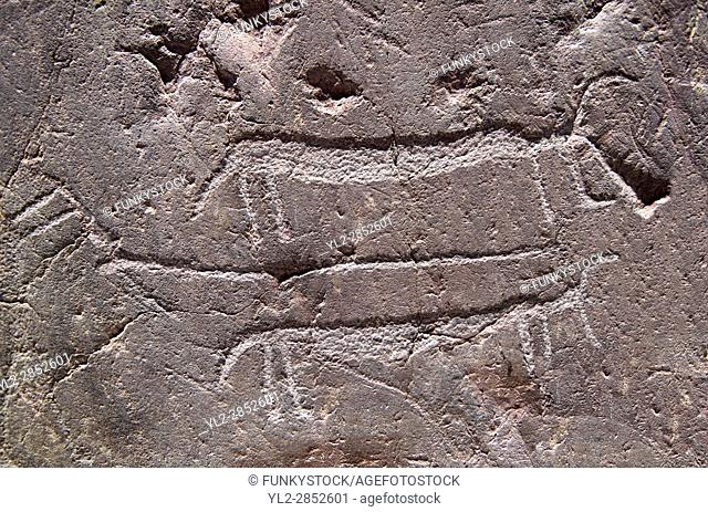 Close up of prehistoric petroglyphs, rock carvings, of animal carved by the the prehistoric Camuni people in the Copper Age around the 3rd milleneum BC