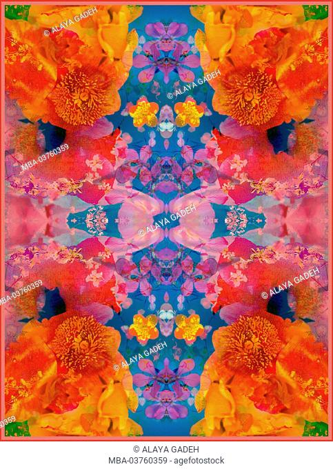 A Floral Montage, symmetric layer work from blooming flowers