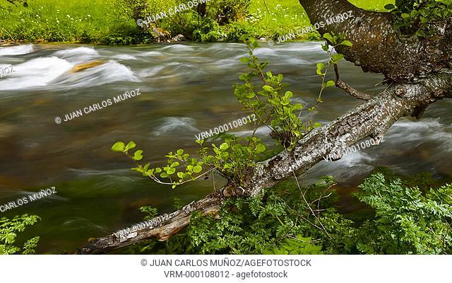 The Natural Park of Fuentes del Narcea, Degaña e Ibias, Asturias, Spain, Europe