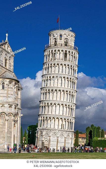 Campanile, Leaning Tower of Pisa, Pizza del Miracoli, Pisa, Province of Pisa, Tuscany, Italy, Europe