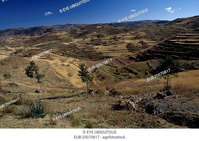 Terraced hillsides and country road between Asmara and Keren