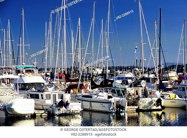 Boats, Blaine Marina, Blaine, Washington