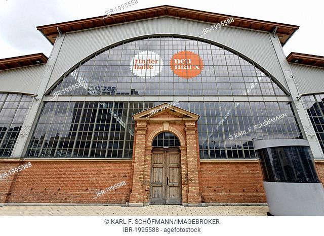 Rinderhalle, event venue, former central livestock market, Zentralviehmarkt, in St. Marx, Vienna, Austria, Europe