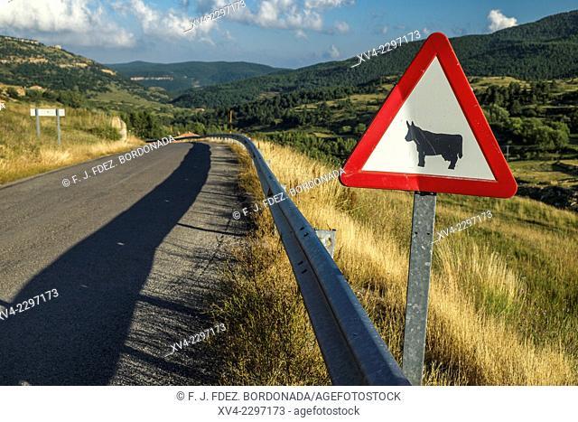 Valdelinares Road, Teruel, Aragón, Spain