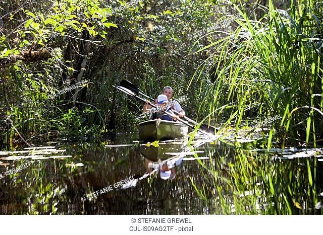 Father and son in a rowing boat, Everglades, Florida, USA