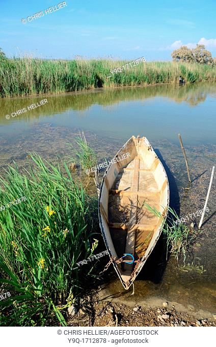 Rowing Boat & Marshes or Wetland Camargue Provence France