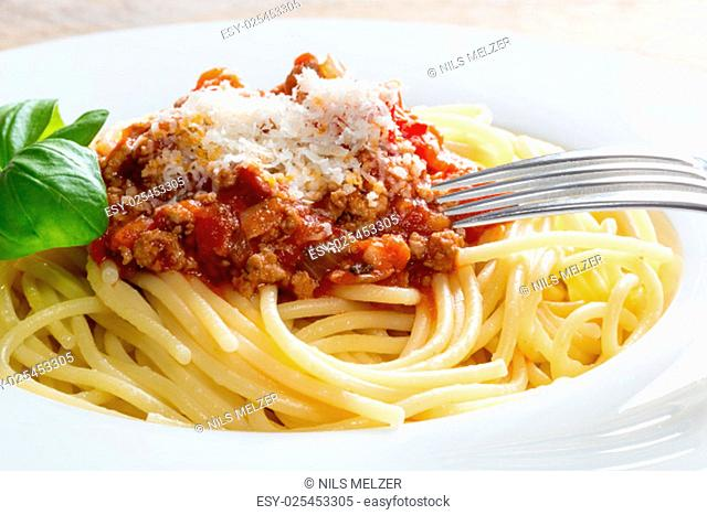 spaghetti with bolognese sauce parmesan cheese and basil
