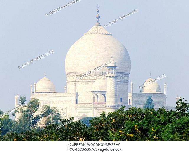 Domed Roofs of the Taj Mahal