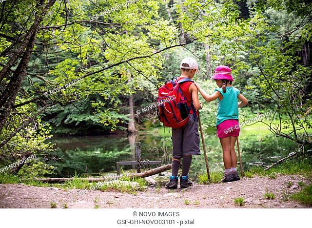 Boy and Girl Standing at Edge of Pond, Rear View