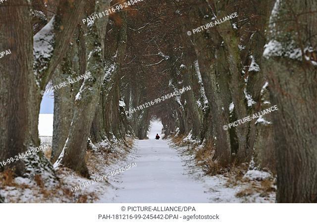 dpatop - 16 December 2018, Bavaria, Marktoberdorf: A jogger walks along the snow-covered path of an avenue. Photo: Karl-Josef Hildenbrand/dpa