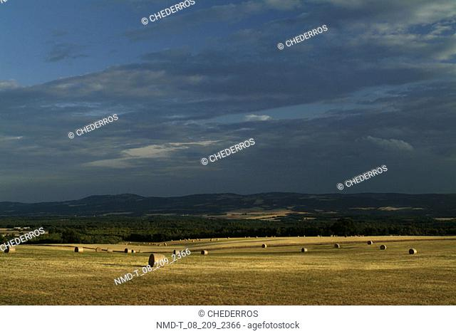 Hay bales in a field, Provence, France
