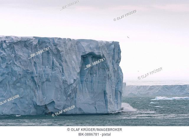 Bråsvellbreen, longest glacier front of the northern hemisphere, Austfonna, Nordaustlandet, Svalbard Archipelago, Svalbard and Jan Mayen, Norway