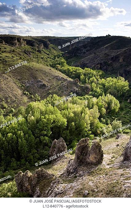 Parque Natural Barranco del Río Dulce Pelegrina, provincia de Guadalajara, Castilla la Mancha, Spain