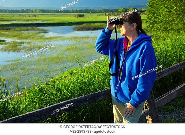 Birding from tour road, Kootenai National Wildlife Refuge, Idaho