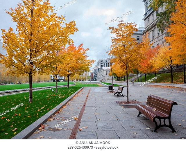 This photo was shot from Montreal city in autumn