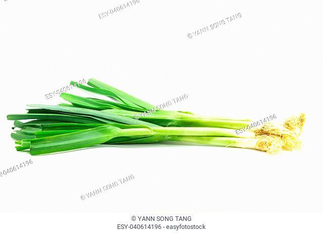 Fresh leek onion isolated on white background