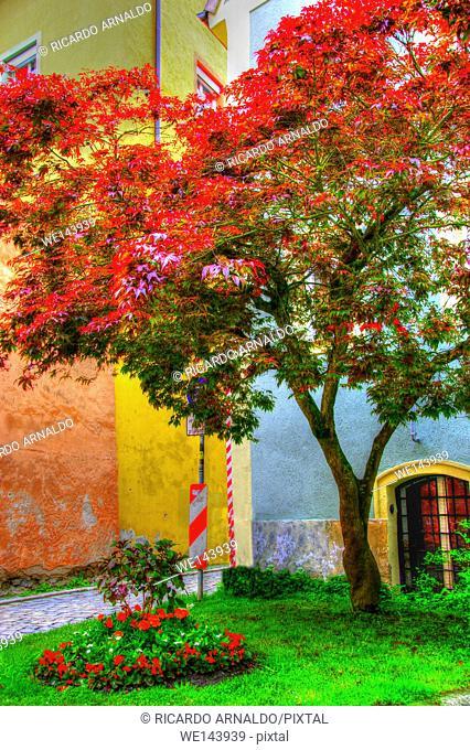 Passau street scene, Germany