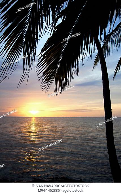 dawn in an island