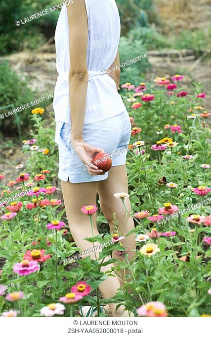 Young woman standing in field of zinnias, holding apple, cropped