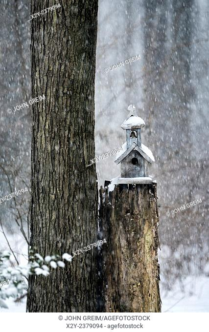 Charming birdhouse chapel in a winter snow storm