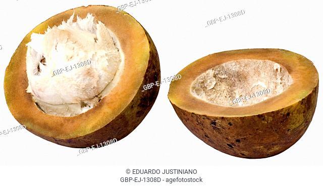 Fruit of Bacuri (Platonia insignis), São Paulo, Brazil