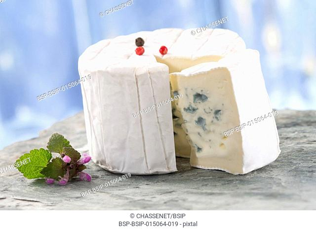 Bresse Bleu, traditional french blue cheese