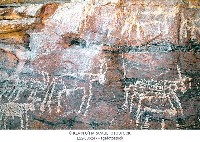 Prehistoric cave paintings. Marmar Tassili. Tibesti Massif. Sahara Desert. Chad