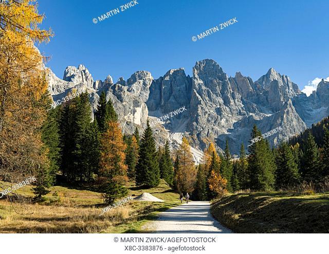 Cima dei Bureloni, Cima della Vezzana. Peaks towering over Val Venegia. Pala mountain range (Pale di San Martino) in the dolomites of Trentino