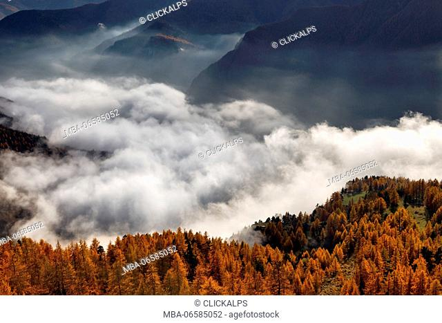 Orsiera Rocciavre Park, Turin, Chisone Valley, Piedmont, Italy, Autumn Orsiera Rocciavre Park