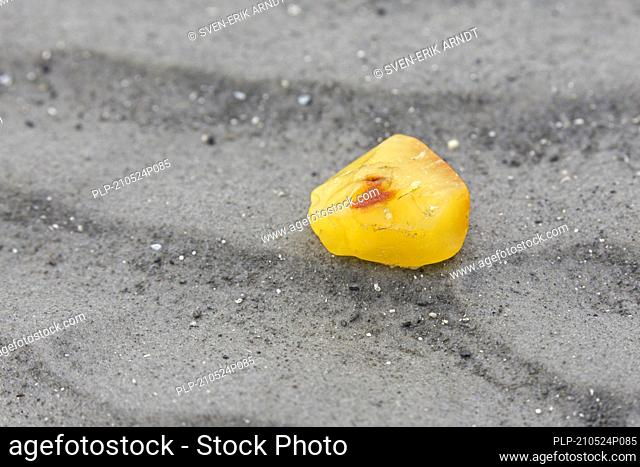 Amber nugget, fossilized tree resin, washed ashore on sandy beach of the Wadden Sea / North Sea, Germany